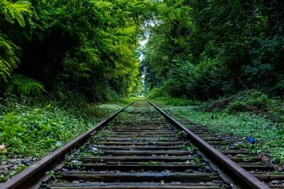 Desarrollo sostenible: una guía a los conceptos