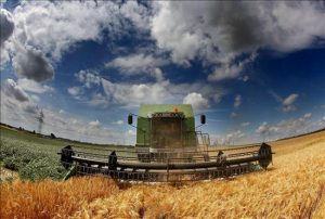 AgriculturaSembrado
