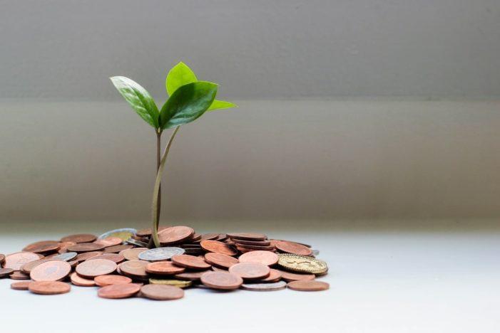 Excedente, renta y otras ideas en el desarrollo