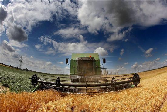 Caen los precios internacionales de los agroalimentos, pero persiste la presión sobre la Naturaleza