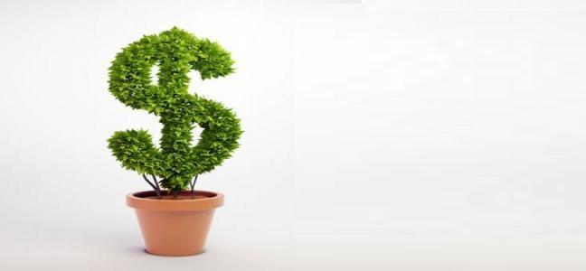 Un Nobel de economía que tiene poco de ecología y mucho de los banqueros